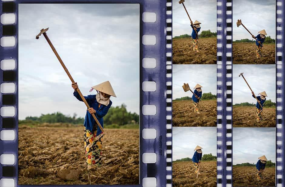 Woman plowing the fields - Contact sheet