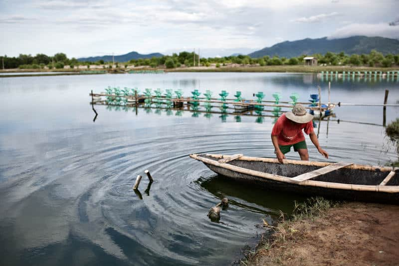 Man preparing his boat to go food shrimps in a pond, Vietnam