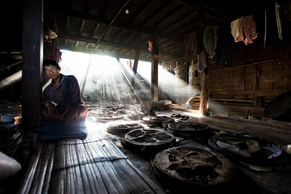 Man sitting in a house drying cheroot leaves in the Shan state, Myanmar