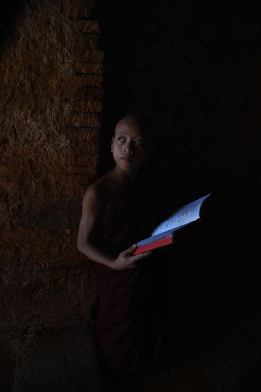 Young Burmese monk reading