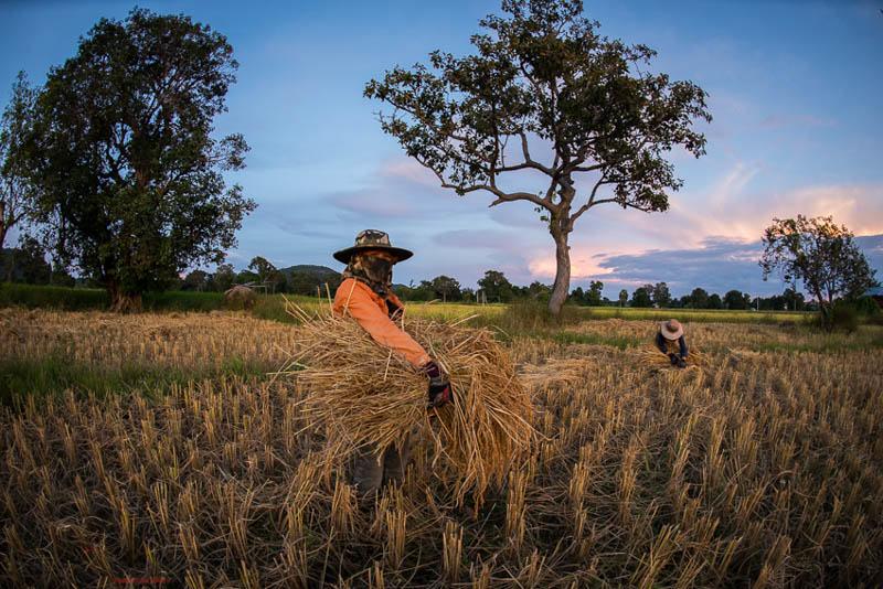 2 farmers in Laos