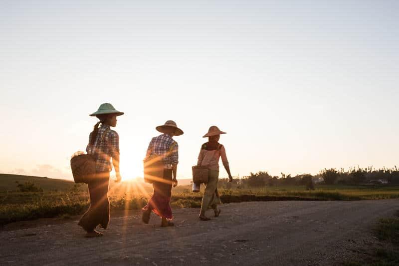 3 farming girls walking back home at sunset in Pindaya