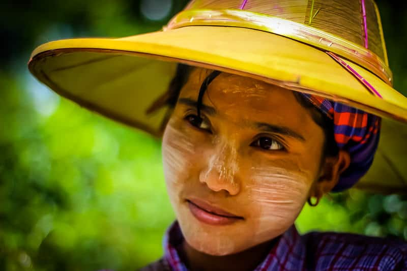 Burmese woman working in the tea plantations in Pindaya