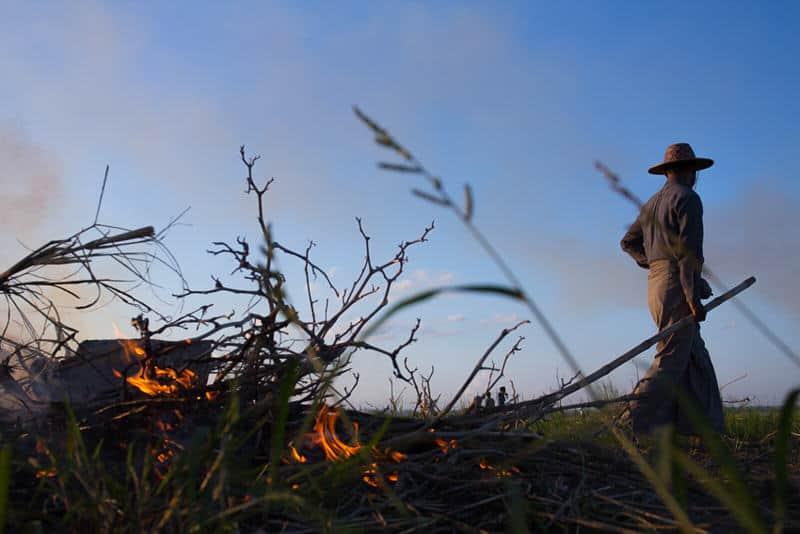 Burmese man burning rice straws