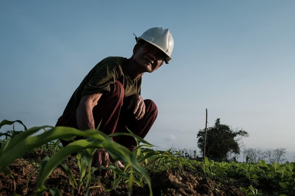 Man working in a peanut field in Vietnam during hoi an photo tour and workshop