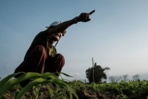A farmer near Hoi An, Vietnam looks at his field, pointing to something out of frame