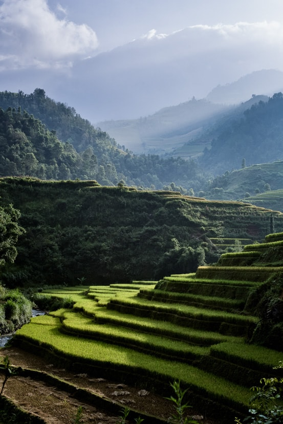 Sun shines through the clouds illuminating steeped rice fields in Northern Vietnam - Pics Of Asia Photo Workshops
