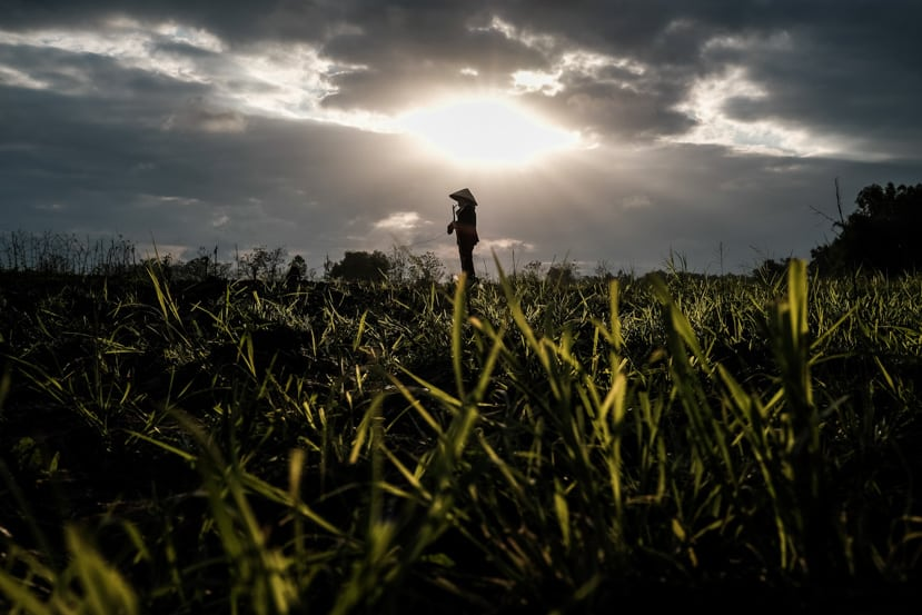 A woman looks over the rice fields as the sun breaks through the clouds - Pics Of Asia Photo Tour Vietnam