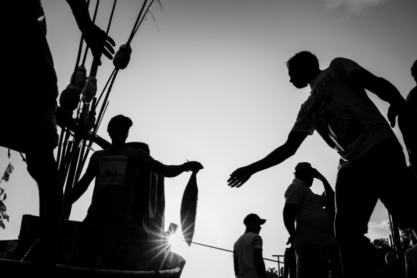 Black and White photograph of Sri Lankan men bringing in the days catch - Taken On Location With Pics Of Asia Photo Tours
