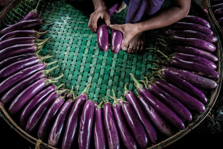 Myanmar seller of eggplant in a local market