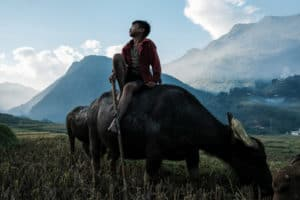 A young man looks skyward while sitting on his water buffalo in North Vietnam - Pics Of Asia Travel Photo Tours