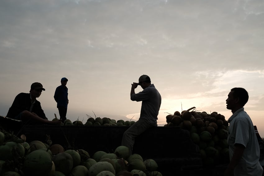 silhouette photo of men unloading coconuts onto boats in the floating market of Long Xuyen in South Vietnam