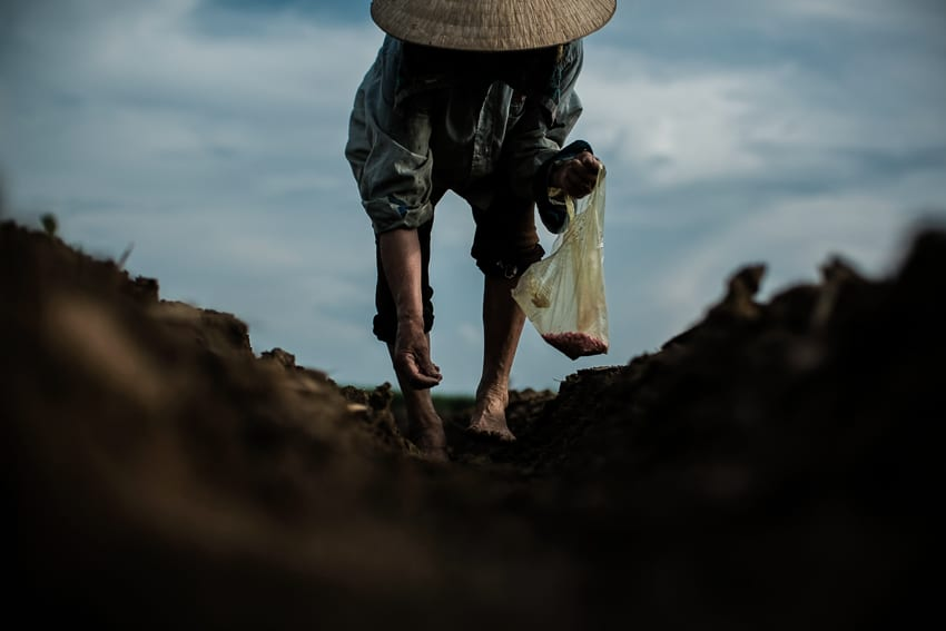 a farmer seeding corn in a field during an afternoon photography tour by Pics of Asia
