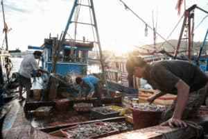 Capturing fishermen unloading their boats in Sa Huynh fish market during a Pics of Asia photography tour