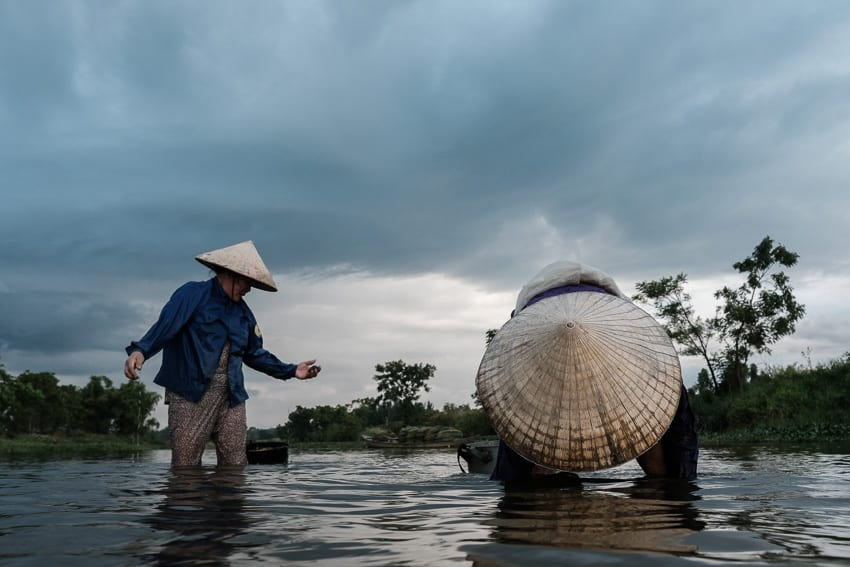 Clams harvest in the river in central Vietnam