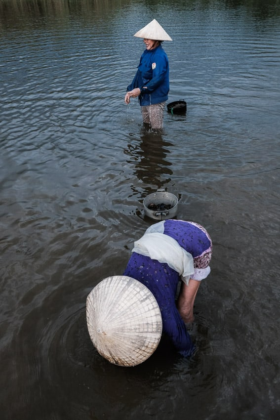 Two women wearing conical hats bending over the water to harvest clams on a Pics of Asia photo tour