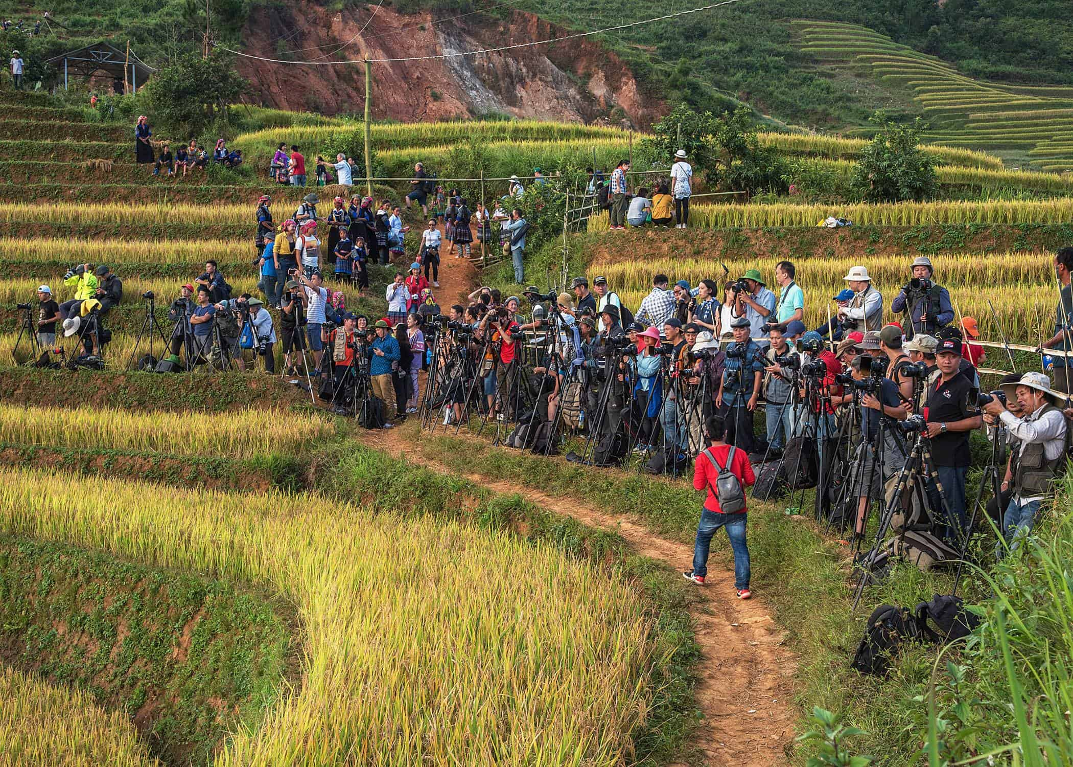 A huge group of photographers in Mu Cang Chai lining up with their tripods