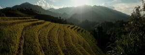 A panorama photo of the rice fields of Mu Cang Chai at sunset, taken during a photography tour with Pics of Asia