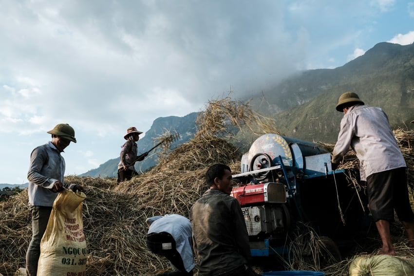 A group of Ha Nhi people using a machine to harvest rice in Y Ty valley during a photography tour with Pics of Asia