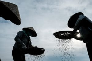 Farmers in Hoi An during Pics of Asia central Vietnam photography tour
