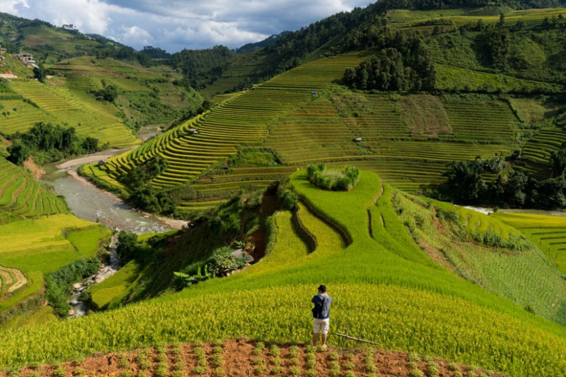 Taking landscape photos of North Vietnam rice fields with Pics of Asia