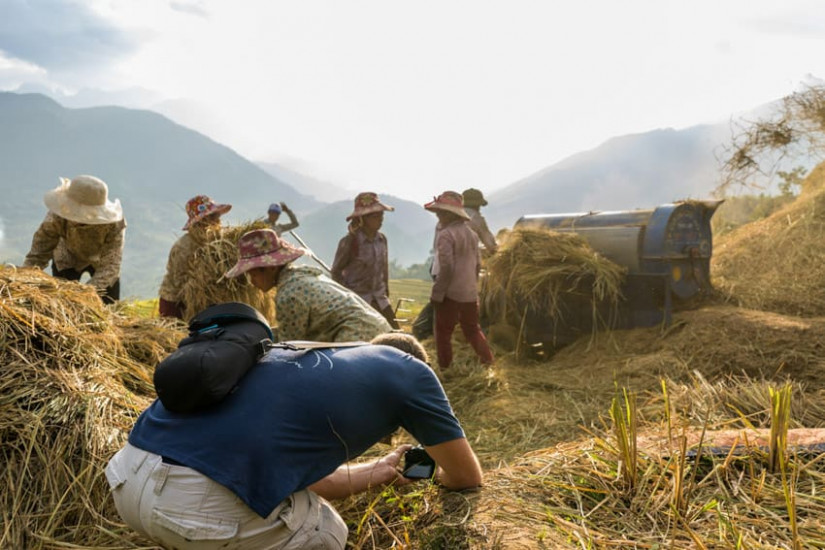 Pics of Asia tour leader during the rice harvest in North Vietnam