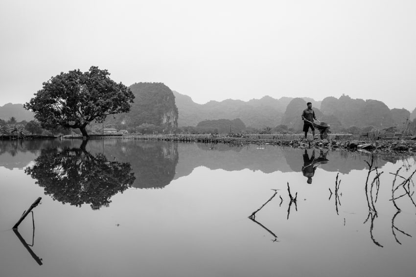Black and white image of e reflection of a tree and a man in Tam Coc, Ninh Binh, Vietnam