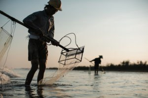 fishermen dragging clams at sunset on the beach of Nam Dinh, North Vietnam