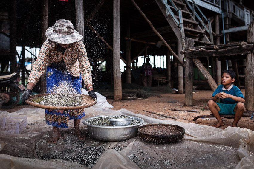 Regis Binard captures snail gatherers in the countryside around Sieam Reap for a joint photography tour with Pics of Asia
