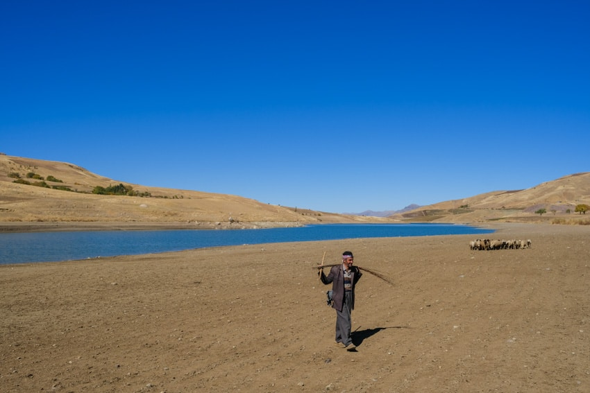 A man walking with his herd of sheep near a lake in the Iranian Kurdistant during a photography tour with Pics of Asia