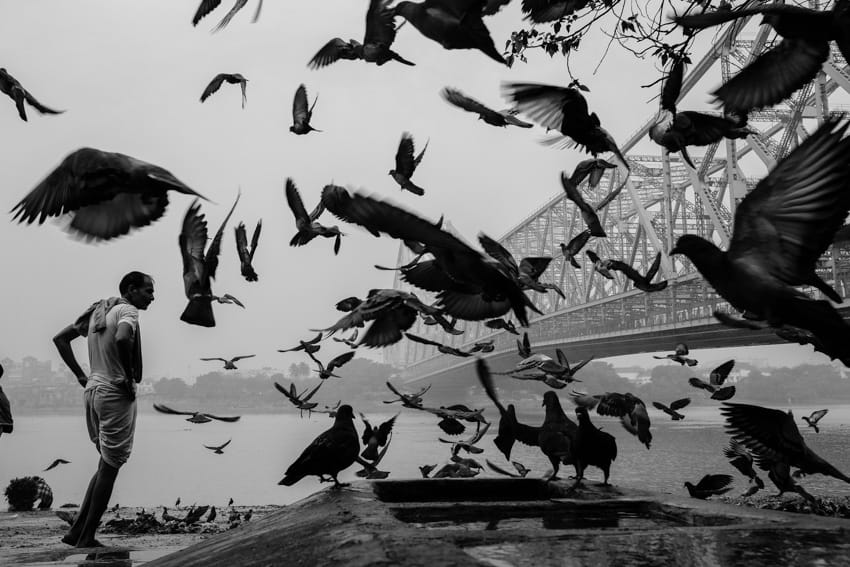A flock of pigeaons take up in the air in front of the Howrah bridge in Kolkata during a photo tour with pics of asia