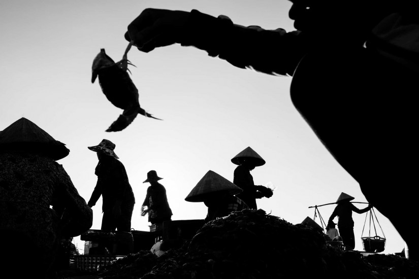 A group of women are sorting crabs on a beach at sunrise on a photography tour around Hoi An