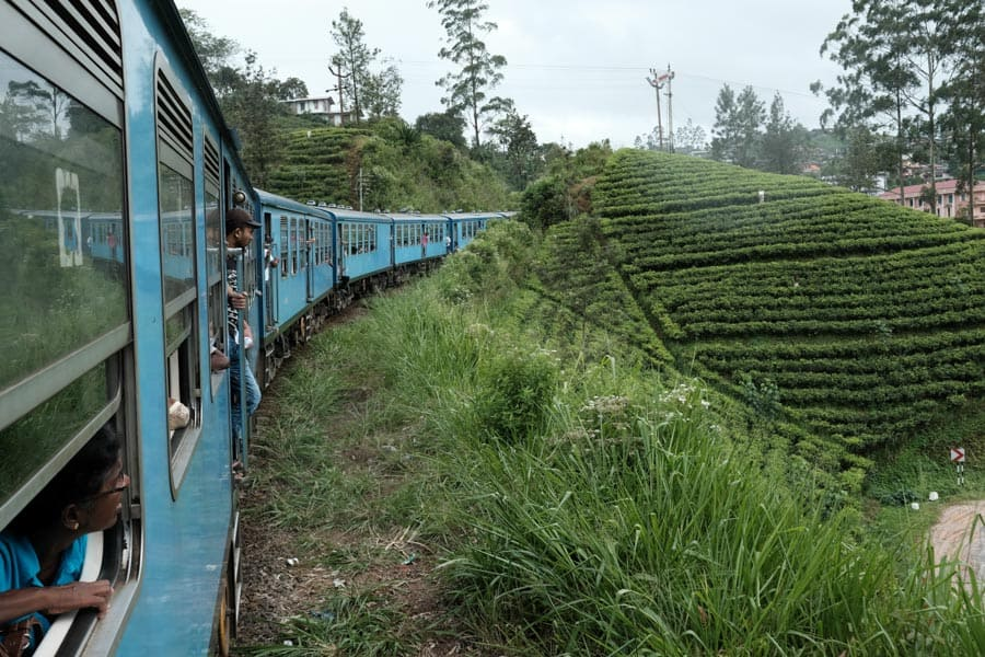 Enjoying the train ride in the tea plantations in Sri Lanka on a photography tour with Pics of Asia