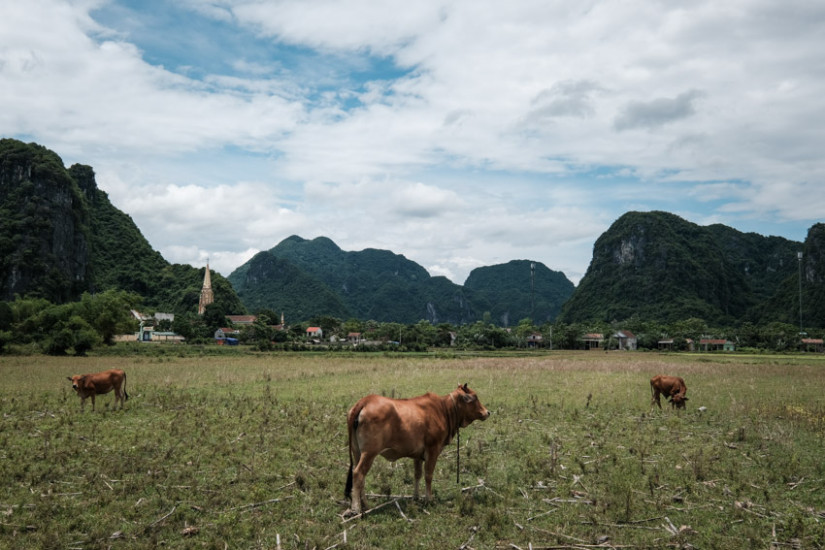Landscape photography in Phong Nha national park with Pics of Asia
