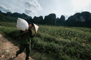 farmer walking in Phong Nha national park