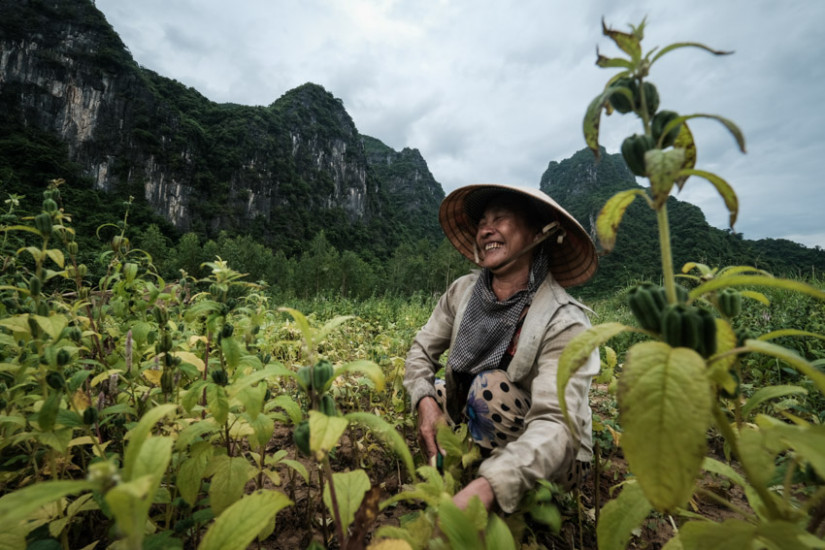 Friendly farmers in Phong Nha as seen through the eyes of Pics of Asia
