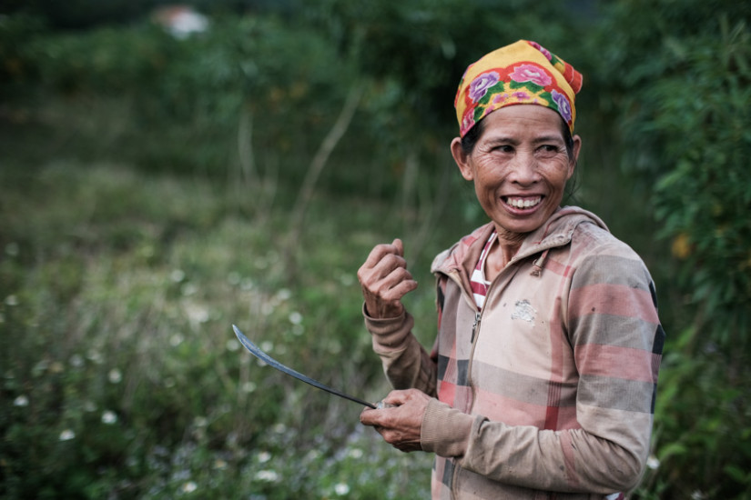 Cassava farmer in Phong Nha, vietnam