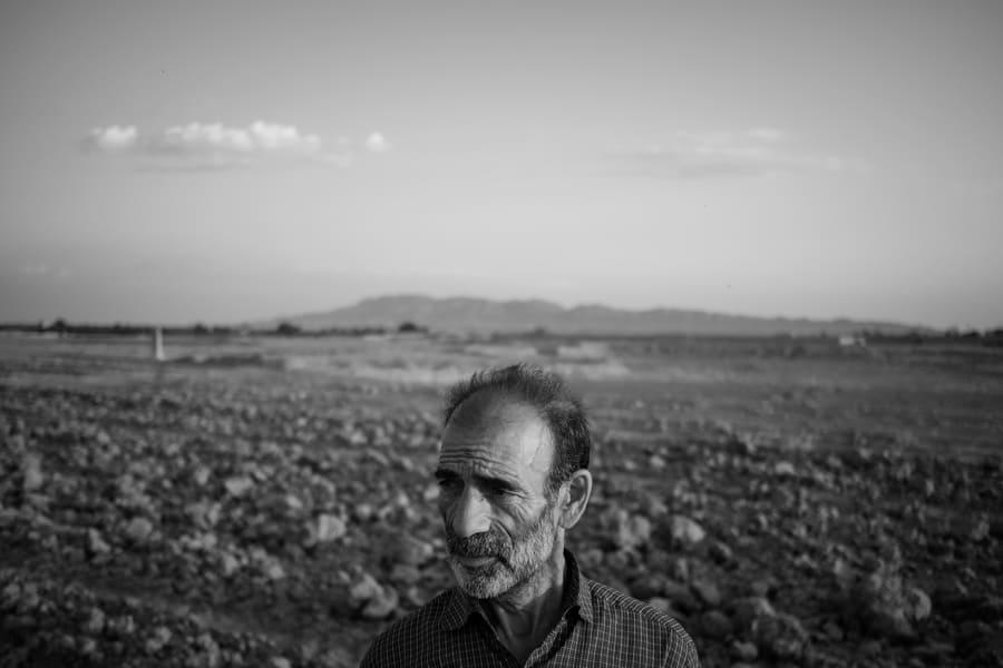 Kashmar saffron farmer in the region of Khorasan, Iran